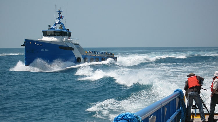voyaging don osiris ship delivery TOS