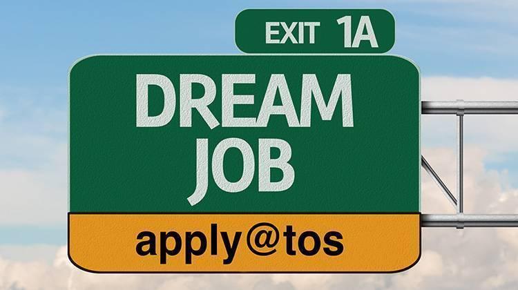 dream job NCE TOS